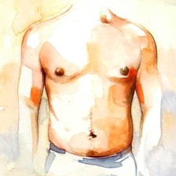 Drawing of Male Chest after Gynecomastia Surgery
