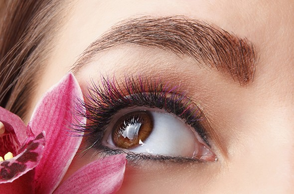 Need Eyebrows? The Neograft Eyebrow Transplantation Procedure Might Be Worth The Investment